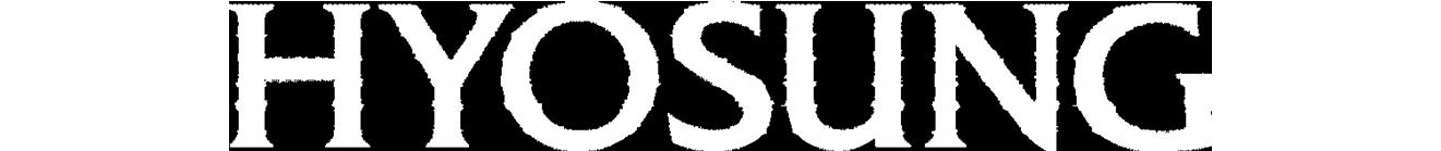 Hyosung ATM logo